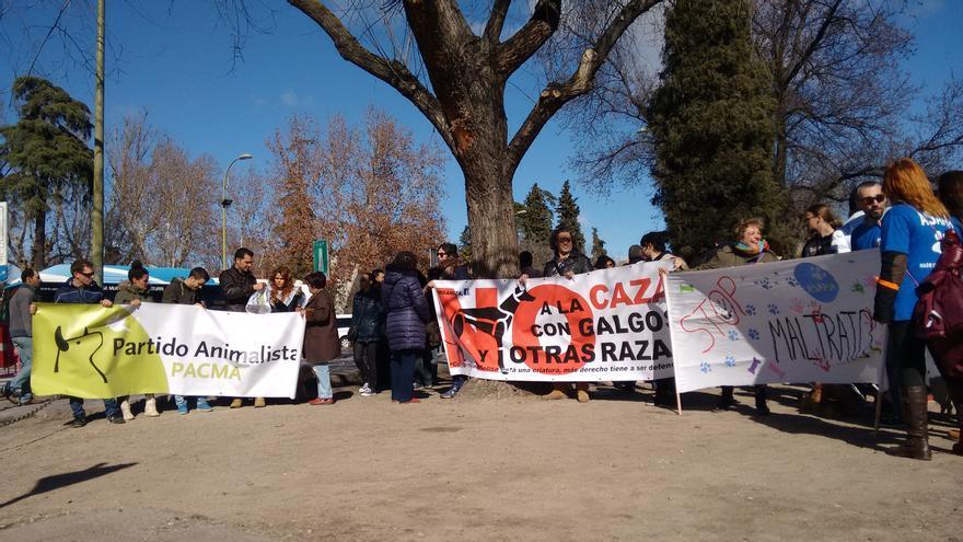 Protesta en Toledo contra la caza con galgos / eldiarioclm.es