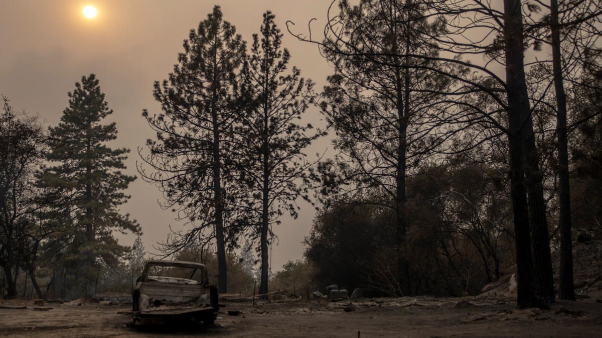 Decenas de incendios forestales a lo largo de toda la costa oeste de Estados Unidos se han cobrado en las últimas horas la vida de por lo menos quince personas