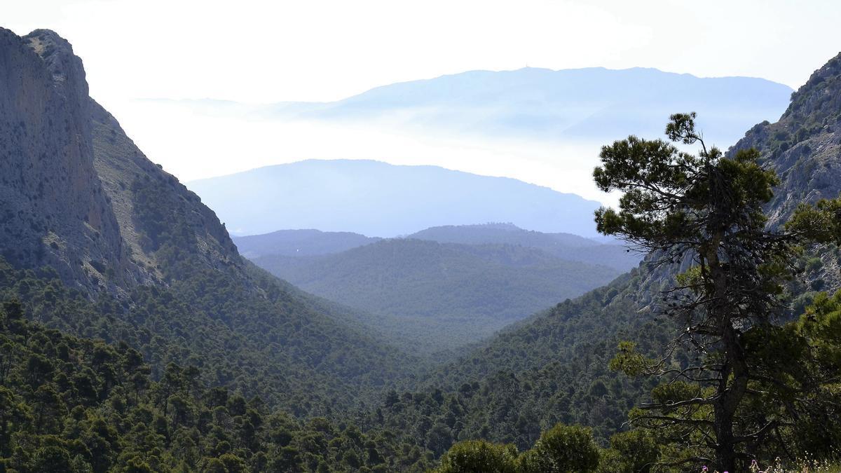 Sierra de Espuña, en Murcia, uno de los espacios protegidos de España incluido en la red Natura 2000. EFE/Archivo