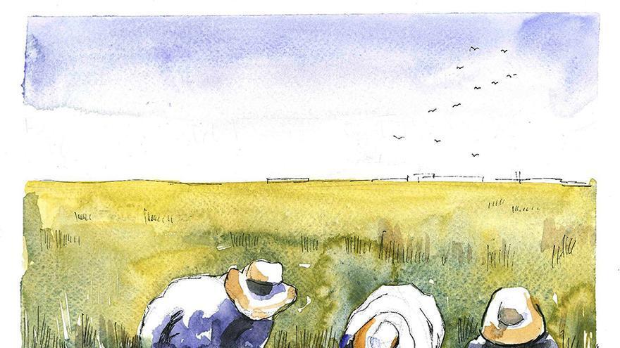 'La isla del arroz', un libro de Juan Miguel Baquero.  