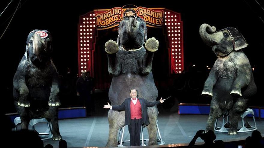 El circo Ringling Bros de EE.UU. dejará de usar elefantes en sus espectáculos