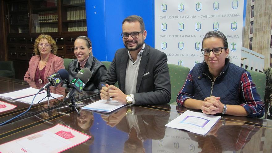 En la imagen, rueda de prensa del proyecto 'La Palma Artesanía'.
