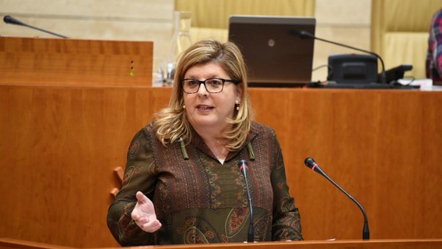 María Victoria Domínguez, Ciudadanos