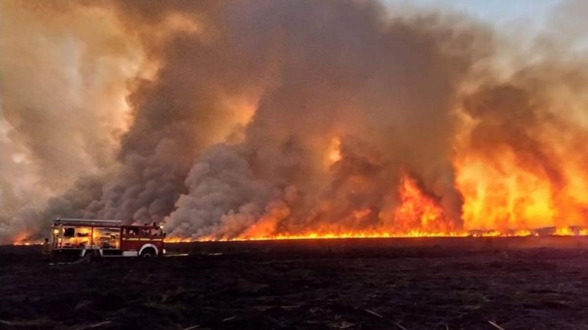 Las llamas se esparcieron por islas en el Delta del Paraná, entre Santa Fe, Entre Ríos y Buenos Aires.