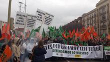 Una parte de los manifestantes