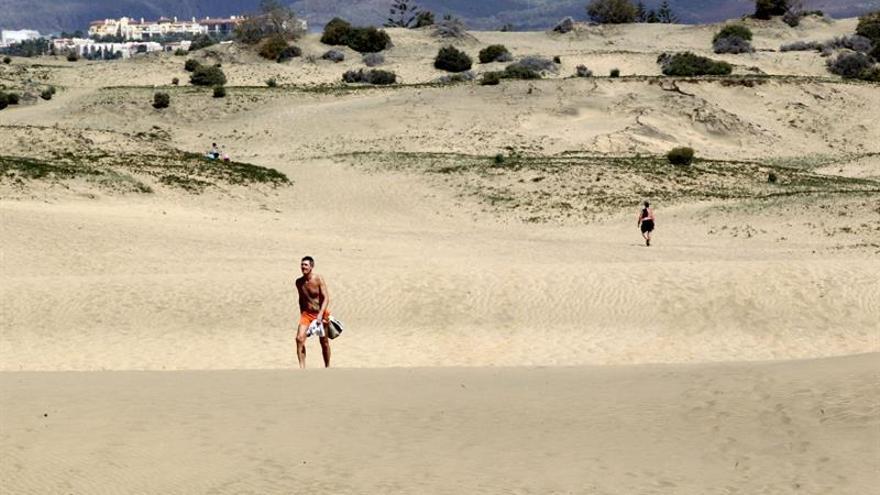 Maspalomas ha perdido un 24 por ciento de sus dunas en 50 años y Corralejo, un 13 por ciento