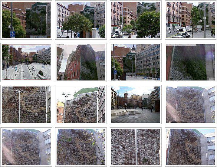 fotos recopiladas