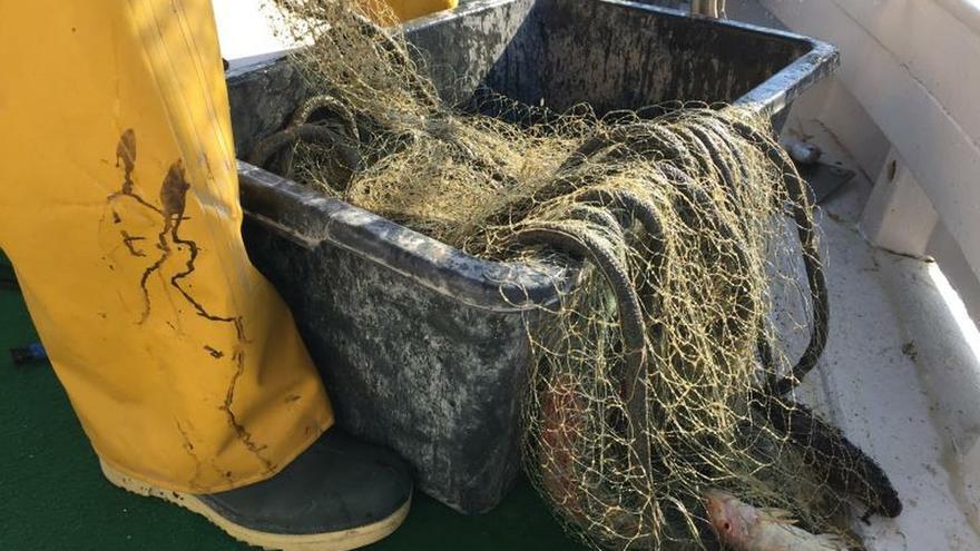 Del anzuelo al turismo, pescadores por la conservación de los mares