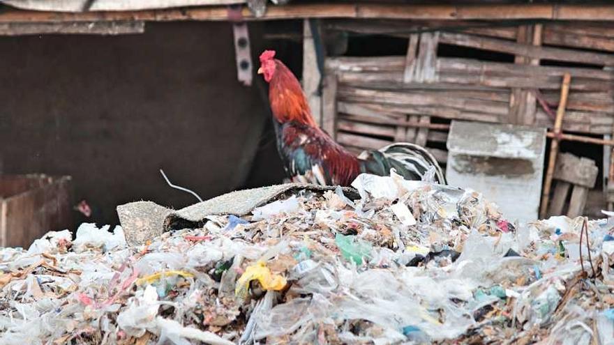 Pilas de basura en las calles de Bangun, Indonesia.