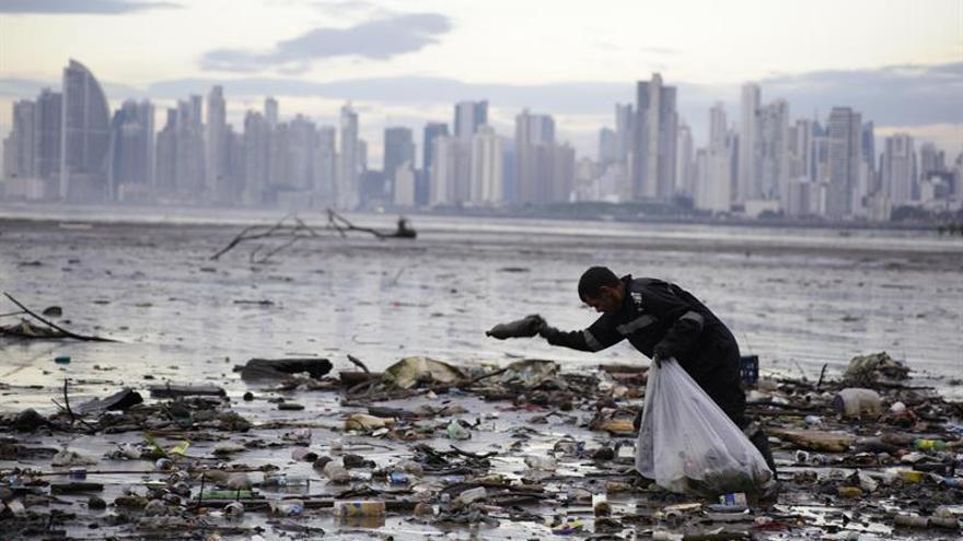 El reciclado de plástico no detendrá la contaminación marina, según la ong Oceana