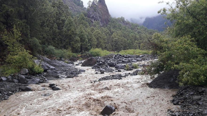 Caudal del barranco de La Caldera, en la zona de Dos  Aguas, este jueves. Foto: Josás Rodríguez.
