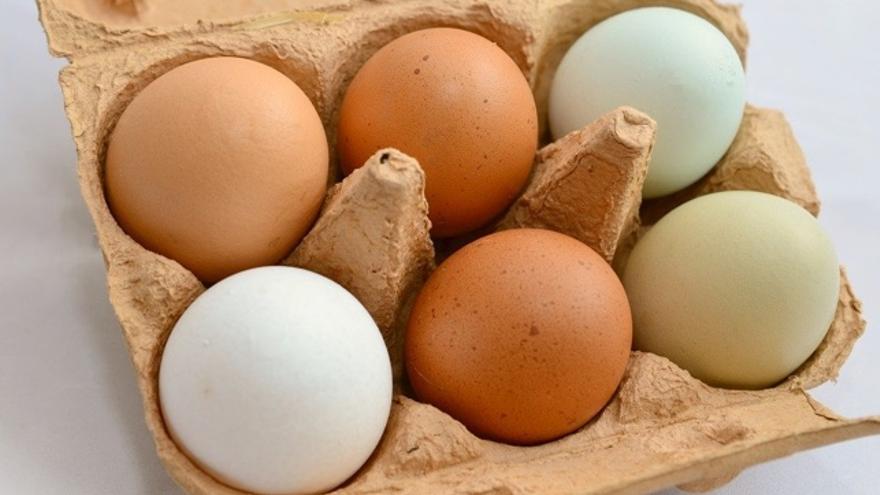 Crudo, escalfado, duro o en tortilla: ¿cómo conserva el huevo mejor sus virtudes nutricionales?