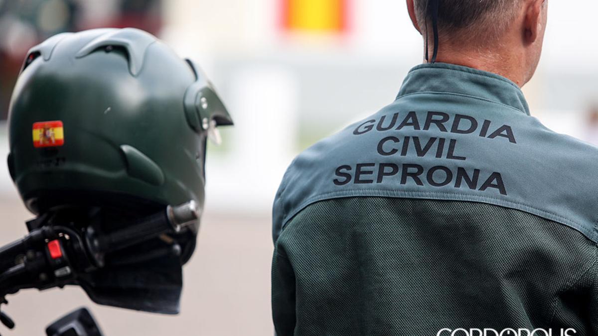 Agente del Seprona