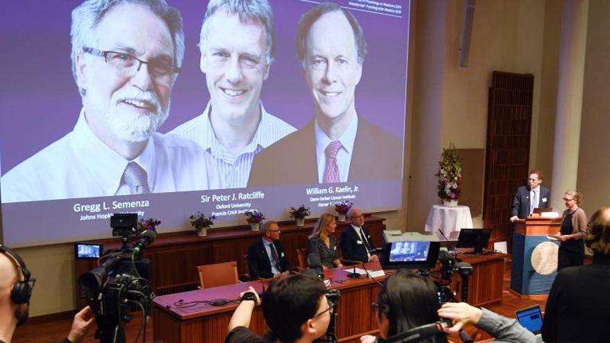 Nobel de Medicina premia estudios sobre relación de células con el oxígeno