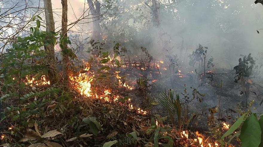 """Venezuela ofrece su ayuda para mitigar la """"dolorosa tragedia"""" en el Amazonas"""