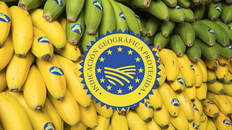 En la imagen, plátano de Canarias.