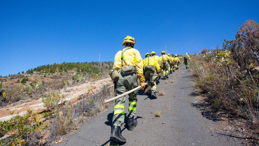 Personal de Brifor, grupo especializado dependiente del Cabildo, camina hacia el lugar de las llamas