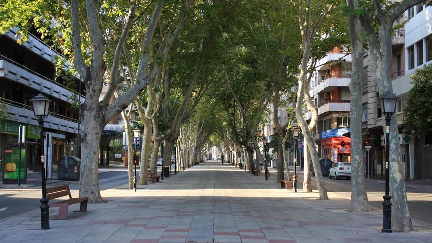 Paseo de Alfonso X el Sabio