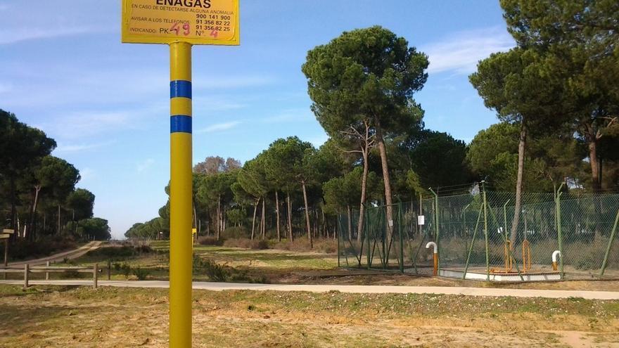 Podemos solicita la paralización cautelar de las obras del proyecto gasístico de Doñana
