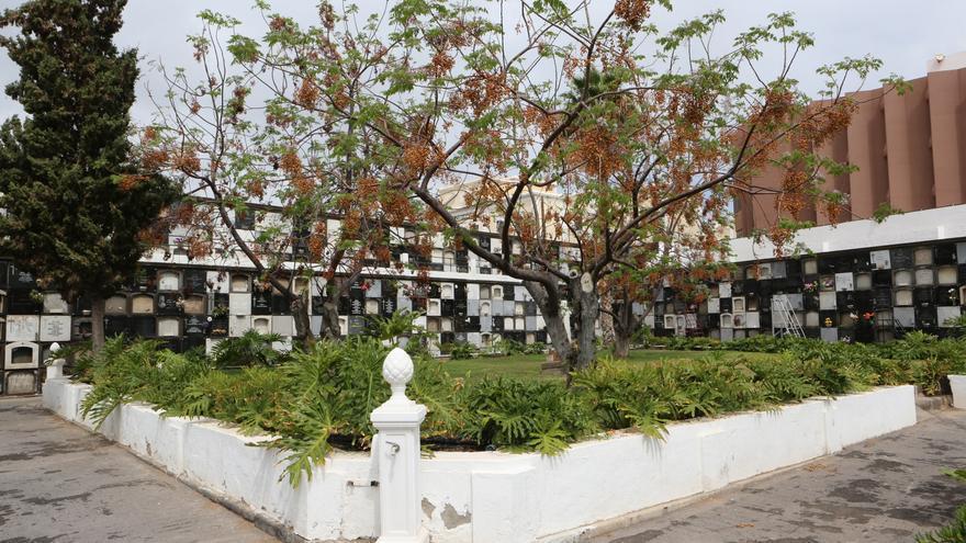 Fosa Común de Vegueta, en Las Palmas de Gran Canaria.