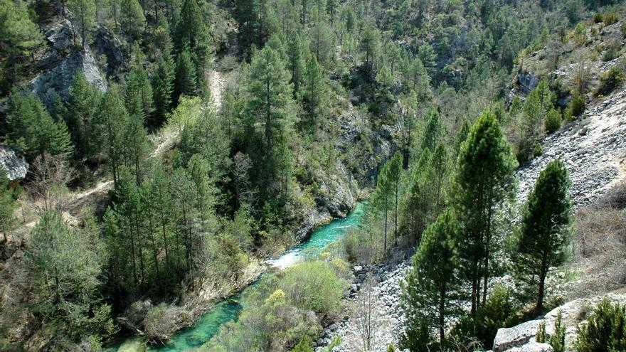 Florece en Castilla-La Mancha un innovador sello de ecoturismo para zonas de la Red Natura