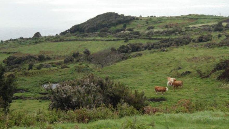 En la imagen, panorámica de Altos de Mazo. Foto: RESERVA DE LA BIOSFERA