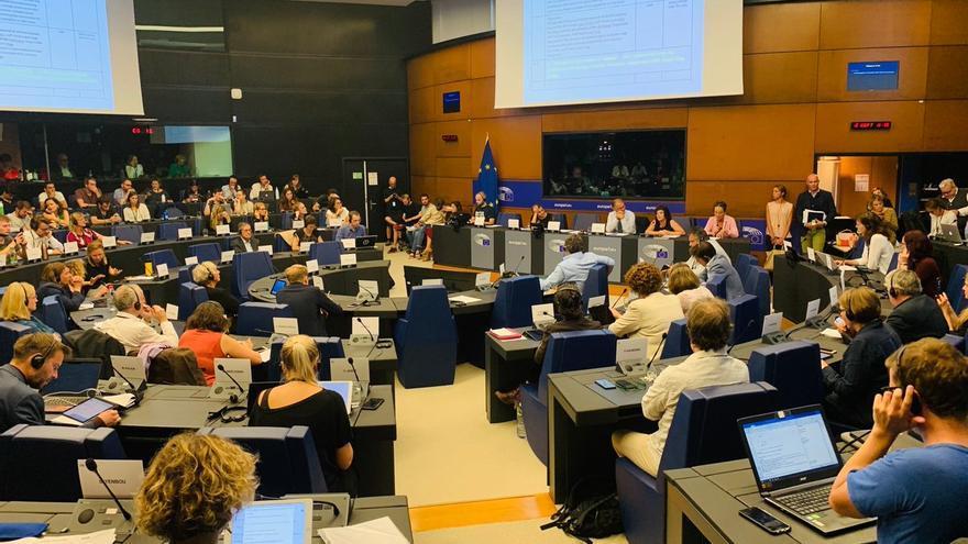 Bel Pozueta y Edurne Goikoetxea, en una reunión con el grupo de los Verdes en el Parlamento Europeo, en Estrasburgo.