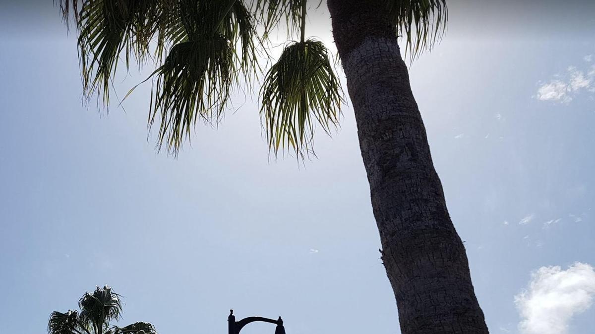 Temperaturas  en ascenso este viernes en La Palma
