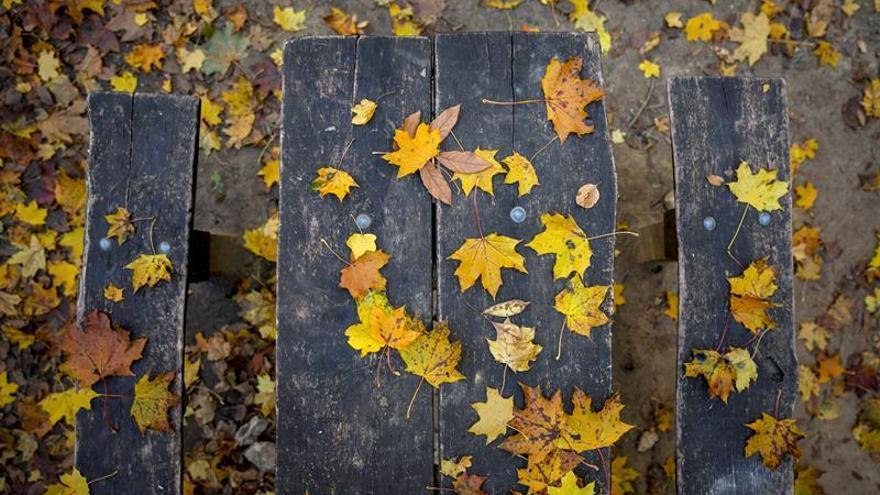 El otoño y sus cambios: meteorología, personas, fauna y paisaje