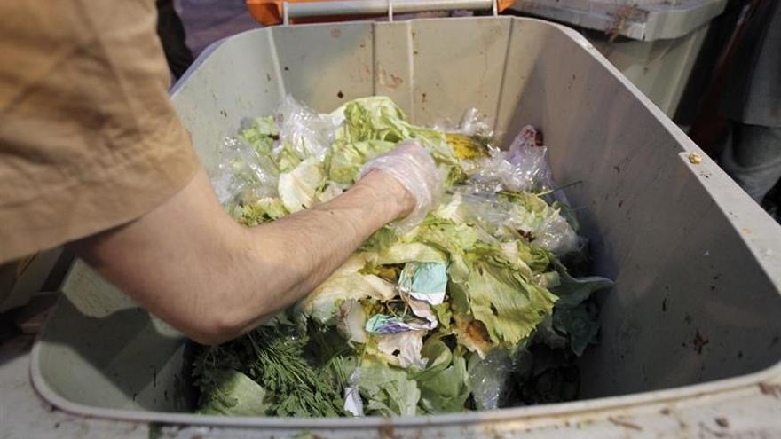 El desperdicio de comida en los hogares españoles cayó un 2,3 % este invierno