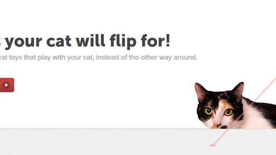 La tecnología para mascotas es una gran oportunidad de mercado aún por explotar