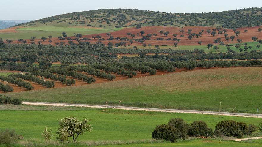 Castilla-La Mancha participa en 'AgroGreen', un proyecto internacional para mejorar la sostenibilidad de la agricultura