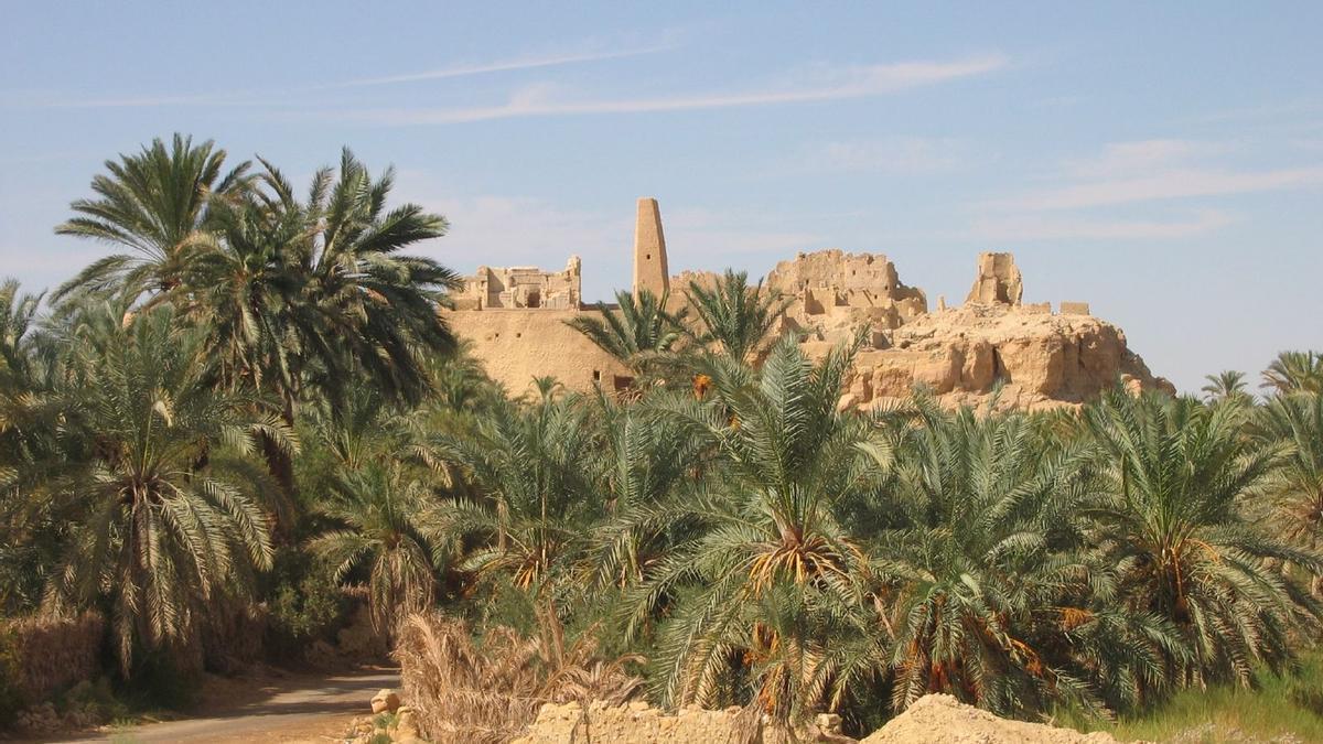 Las ruinas del famoso Oráculo de Amón asoman tras las palmeras del oasis de Siwa.