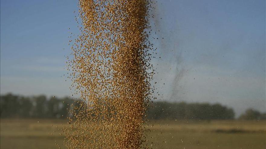 La maldición de la cosecha récord