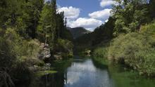 Transición Ecológica revisará el funcionamiento de la Comisión de Explotación del Trasvase Tajo-Segura