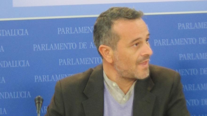 """Castro (IULV-CA): """"Gordillo y Cañamero son cabezas de turco para ejemplificar lo que espera a quien proteste contra PP"""""""
