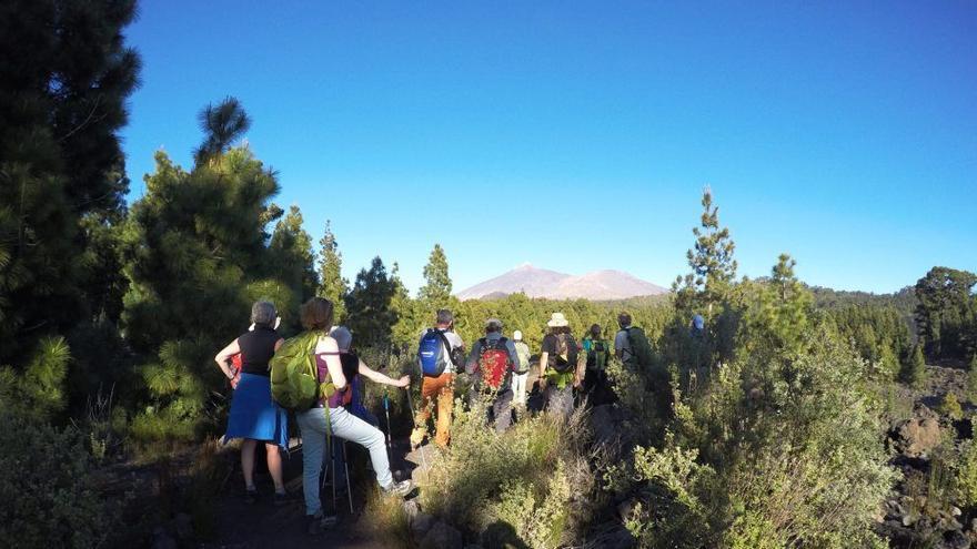 Senderistas realizando el camino de Santiago de Tenerife