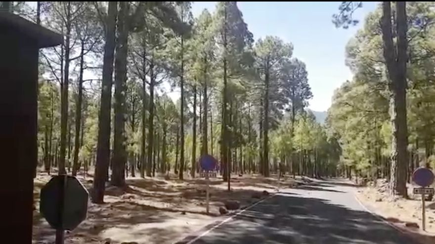 En la imagen, carretera de acceso a La Cumbrecita, en el Parque Nacional de La Caldera de Taburiente.