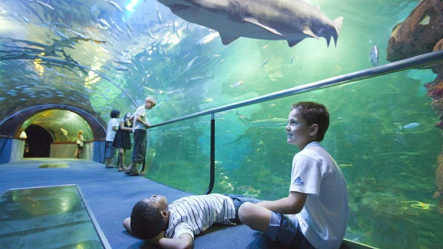 El Aquarium de Donostia