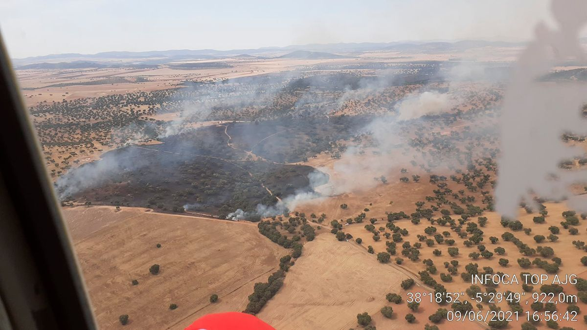 Imagen del incendio forestal en Fuente Obejuna.