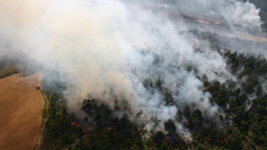La Academia Vasca de Policía y Emergencias analiza este jueves la investigación de incendios
