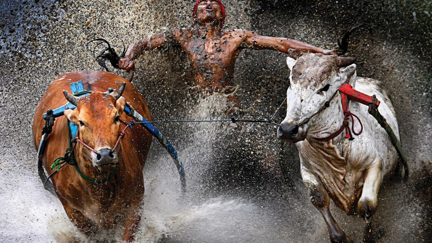 Primer premio del World Press Photo en la categoría de deportes / Wei Seng Chen