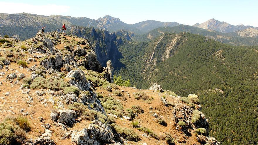 Cazorla, Segura y Las Villas atesora la masa forestal continua más grande de España. Jorge Cancela