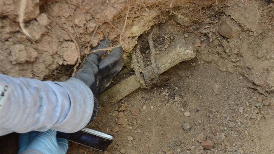 Encuentran en Iguala ocho nuevas fosas que pueden tener cadáveres enterrados