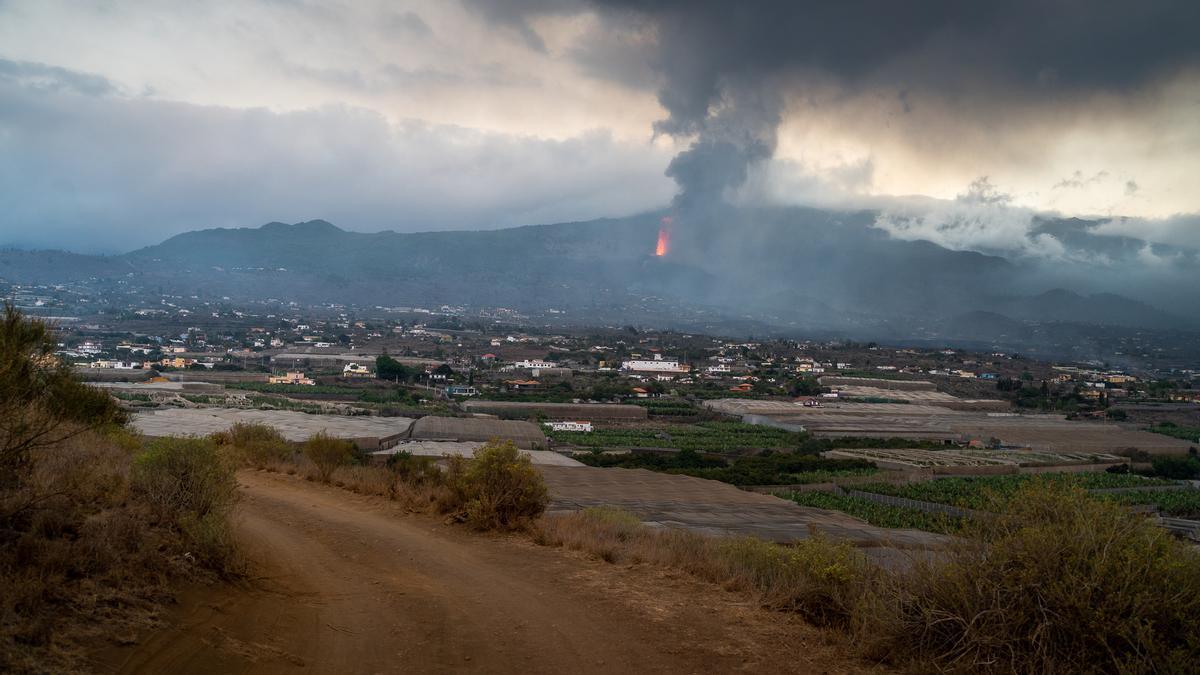 Erupción del volcán en La Palma.