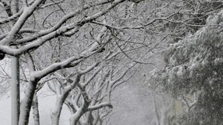 Nieve, Temporal, Frío