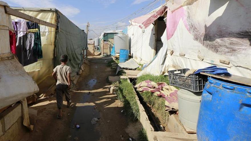 ACNUR: El 70 % de refugiados sirios en Líbano viven bajo el umbral de la pobreza