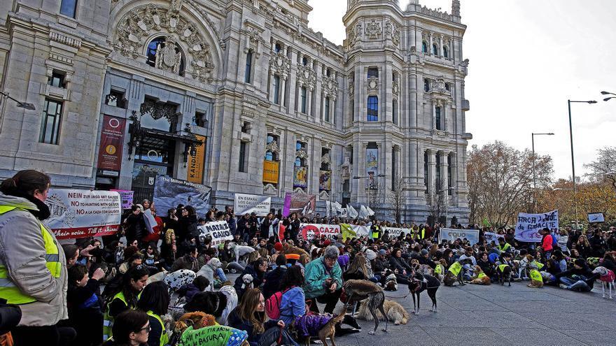 Concentración ante el Ayuntamiento de Madrid convocada en febrero de 2016 por la plataforma No a la Caza (NAC).