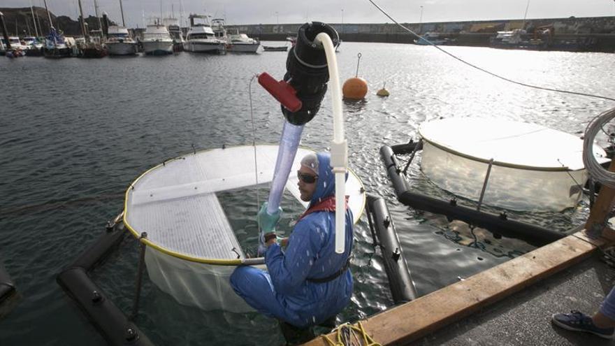 Contenedores de agua marina flotantes (mesocosmos) en los que el Centro Helmholtz de Oceanografía de Kiel, Alemania (Geomar), pretende probar las técnicas para un experimento en Taliarte (Gran Canaria).