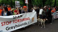 Manifestación en La Haya en defensa de los galgos españoles y otros perros explotados y abandonados por cazadores.